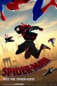 Örümcek Adam Örümcek Evreninde 2018
